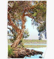 Ocean Lake Retreat Poster