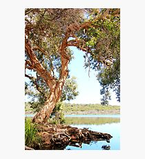 Ocean Lake Retreat Photographic Print