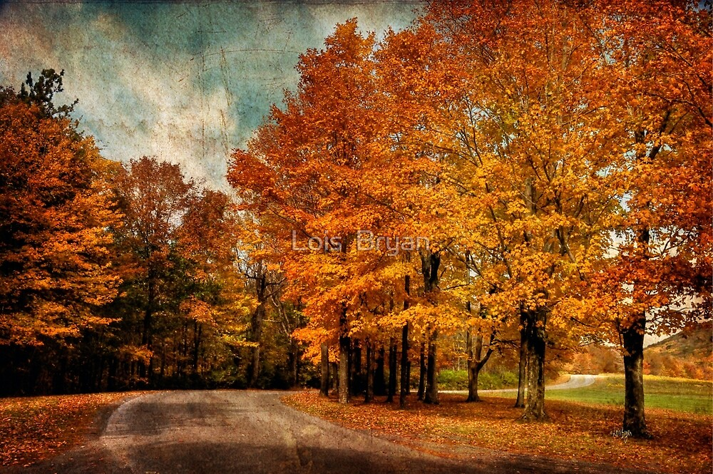 Almost Home by Lois  Bryan