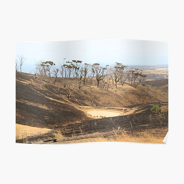 After 2020 Kangaroo Island Fire - Burnt to the Horizon Poster