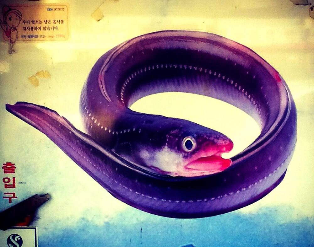 Eel by ChrisSmeaton