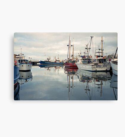 Winter—Victoria Dock, Hobart Canvas Print