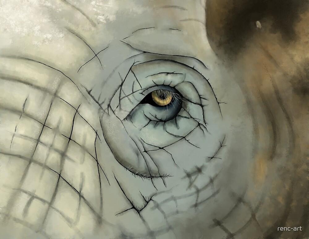Memory - Elephant Eye by renc-art