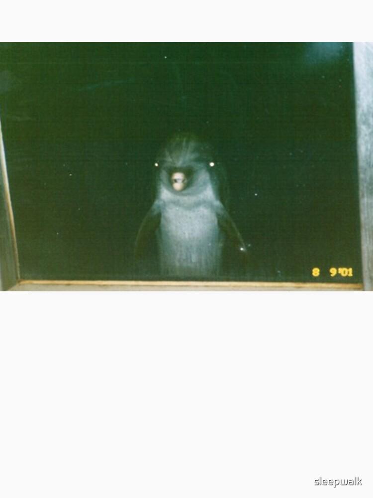 dolphin by sleepwalk