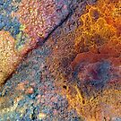 Precious Metals by Marguerite Foxon