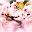 When Nature Resumes Her Loveliness Sakura by Beverly Claire Kaiya