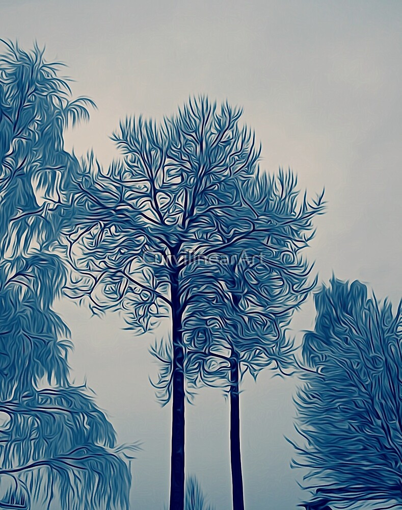 'Winter Trees In Leksand' by CurvilinearArt