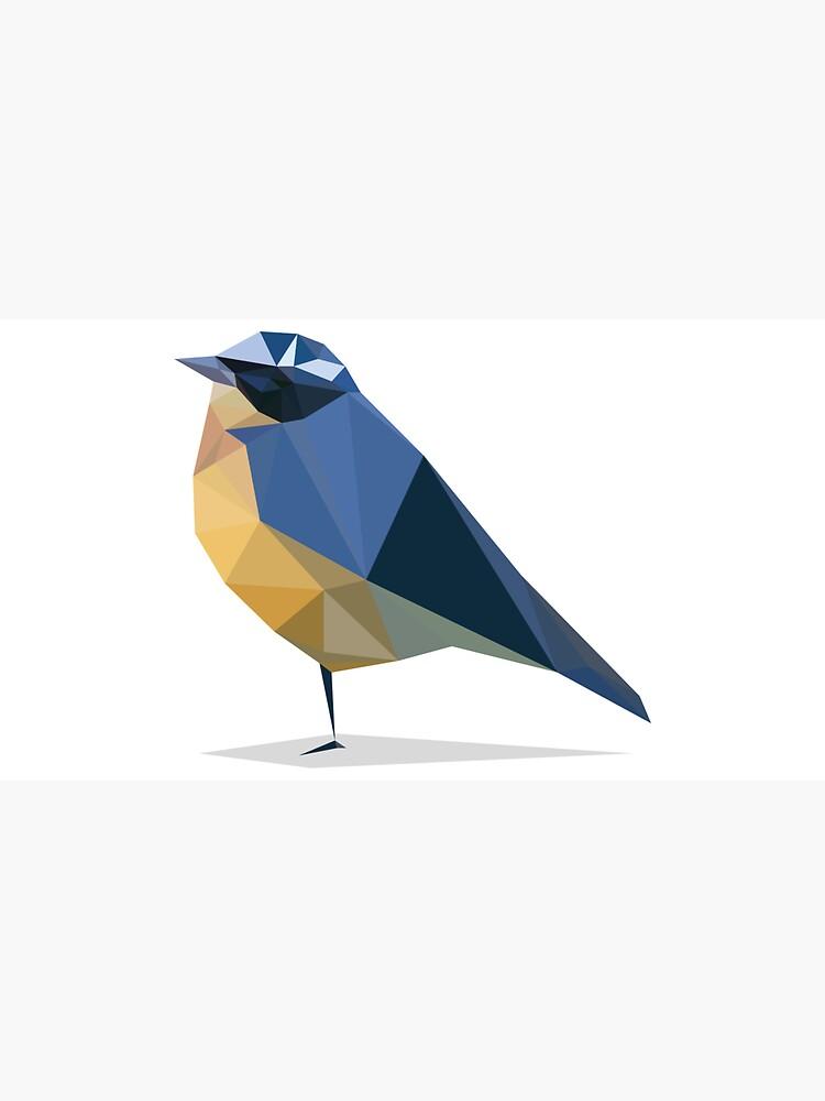 Bird by marcorecuero