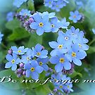 Do not forget me! by Ana Belaj