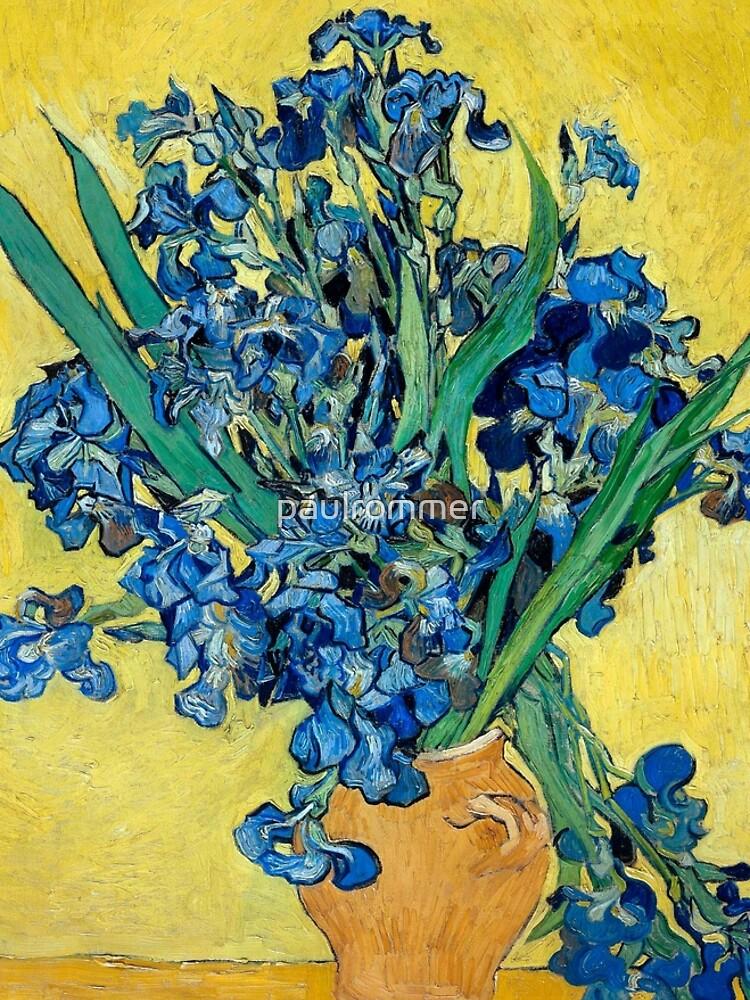 1890-Vincent van Gogh-Irises-73,5x92 by paulrommer