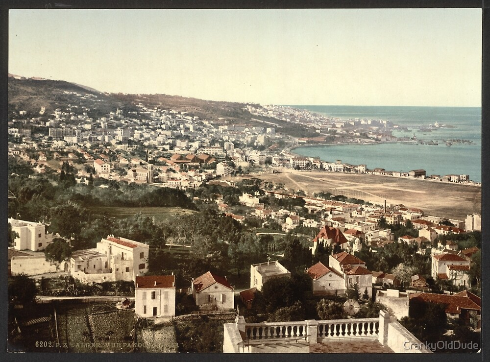 General view from Mustapha - Algiers Algeria - 1899 by CrankyOldDude