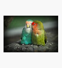 It Must Be Love, Love, Love ... Photographic Print