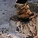 Boots made for lapland by Profo Folia