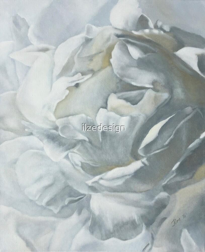 White Peony by ilzedesign