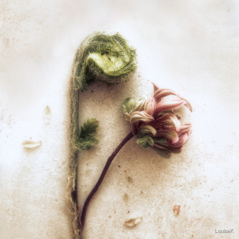 Azelea and Fiddlehead Fern #2 by LouiseK