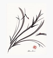 """My Dear Friend""  Original ink and wash ladybug bamboo painting/drawing Photographic Print"