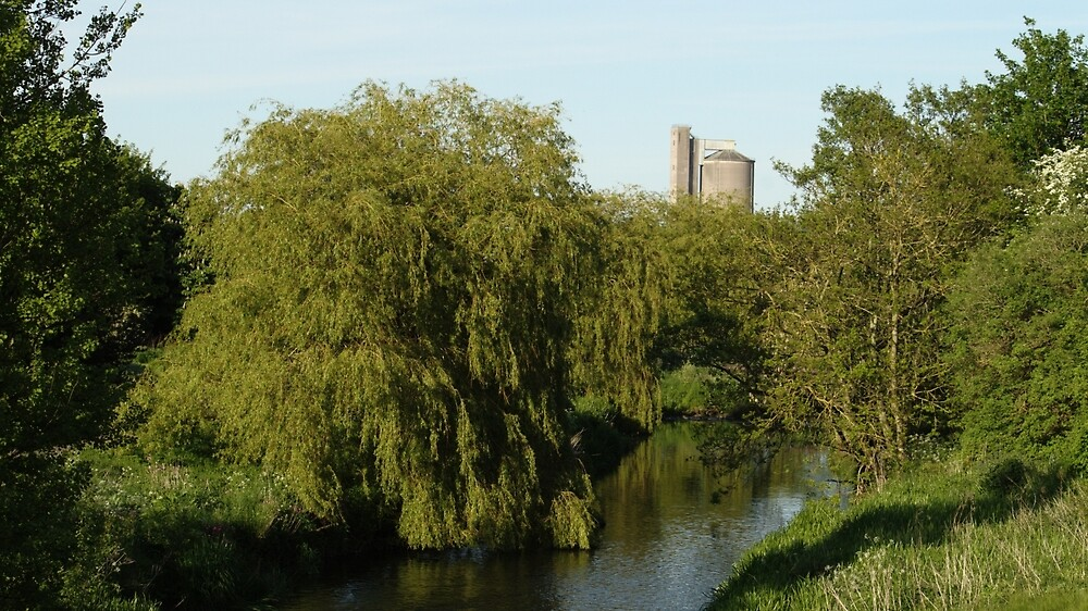 Willow Over The Eden by Adrian Wale