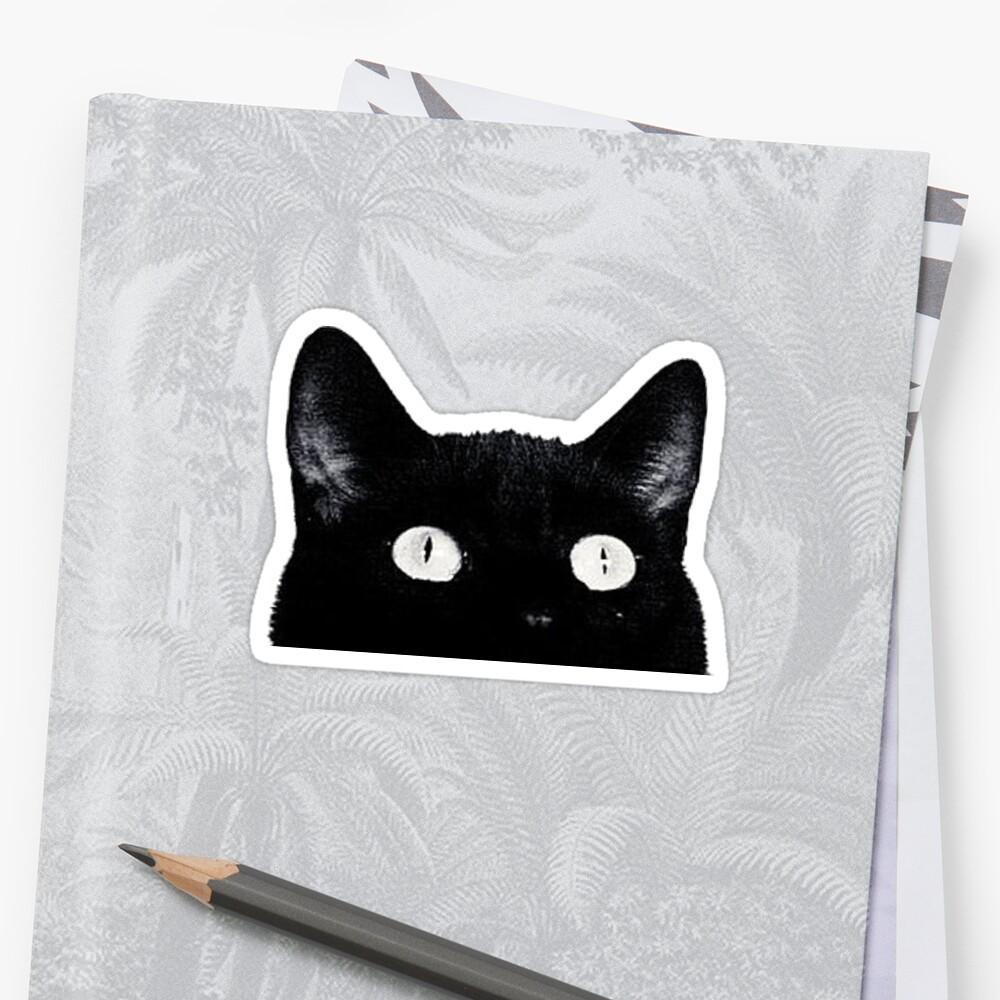 «gato» de darecrisp