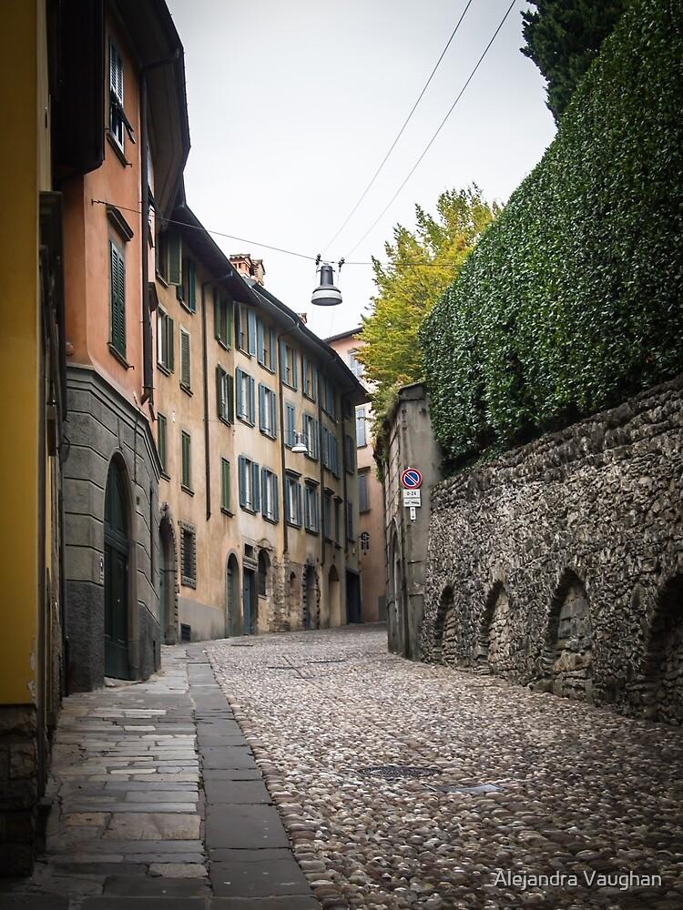 Street of Bergamo by Alexandra Vaughan