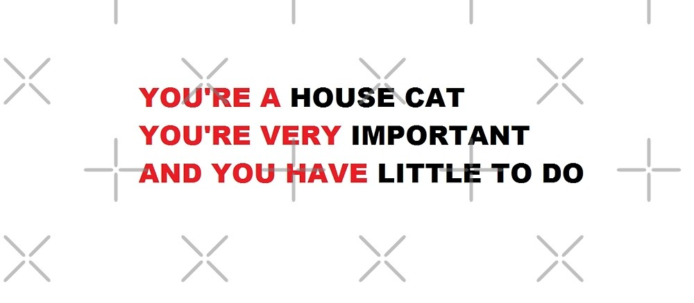 house cat by anklebiter