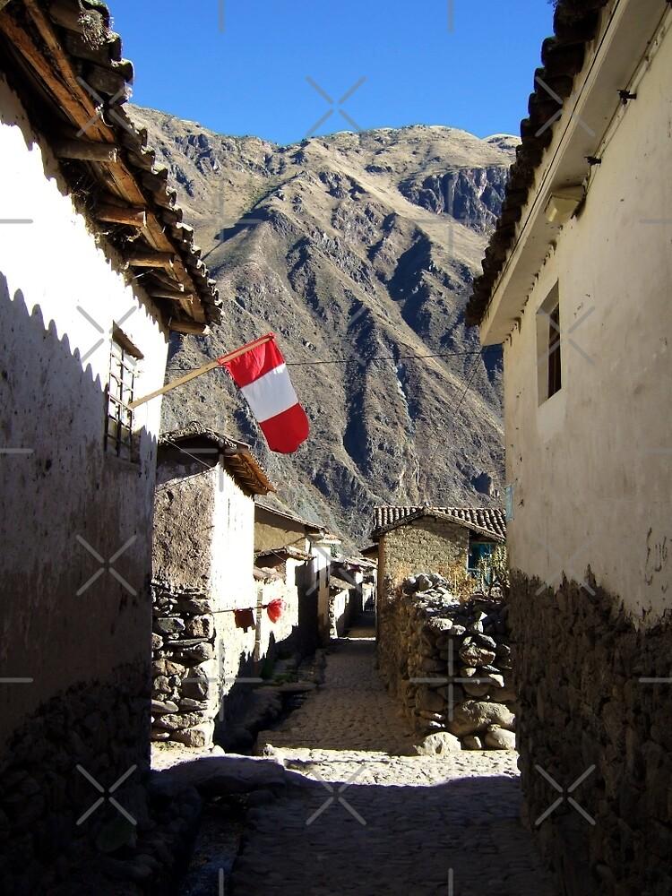 Ollantaytambo, Peru by Ludwig Wagner
