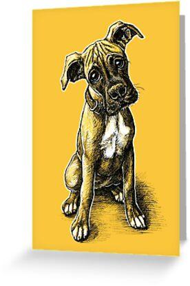 Boxer Puppy by Amanda Lanford