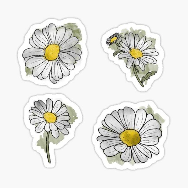Cute Watercolour Daisies Sticker