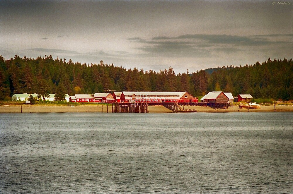 Hoonah Icy Strait Cannery by gillfoto