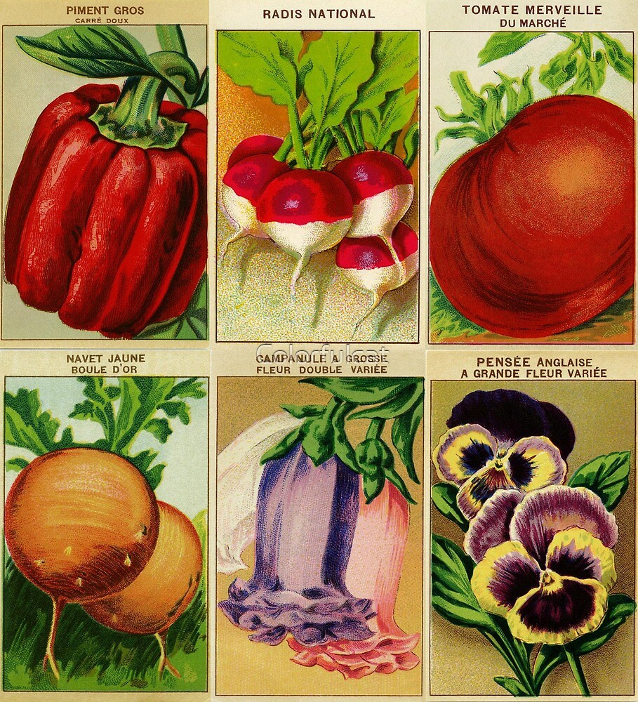 Vintage seed covers by Colorfulcat