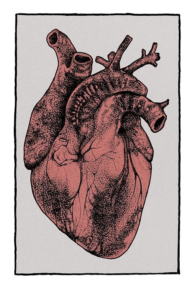 Anatomical heart by Emmi Eriksson