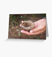 Tiny Nest Greeting Card