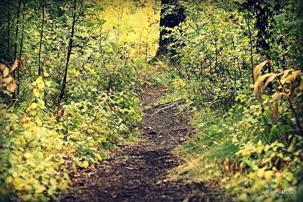 Nature Walk by allie-keech