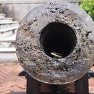 Lizard in a Cannon  by godtomanydevils