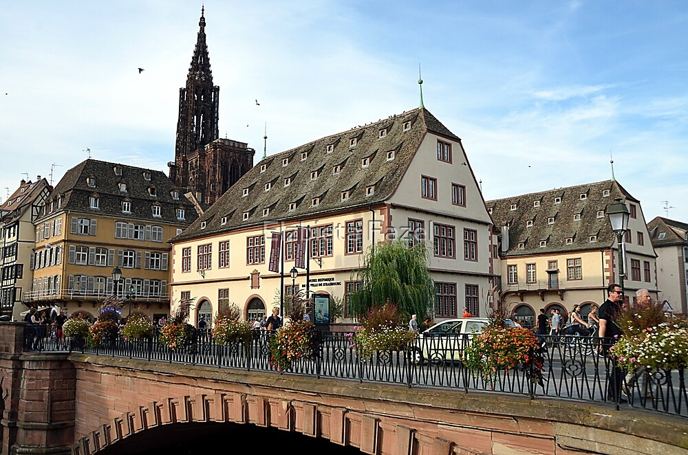Strasbourg Old Town, France by Elzbieta Fazel