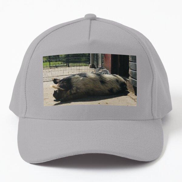 Big Piggy Chillin  Baseball Cap
