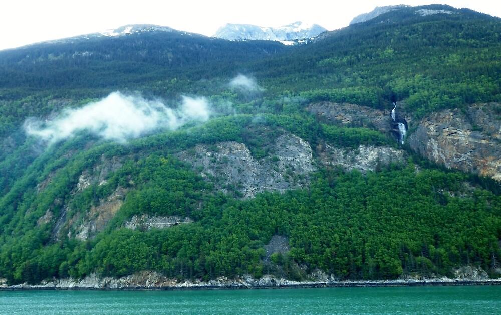 Cruising Inside Passage Alaska by nancyart