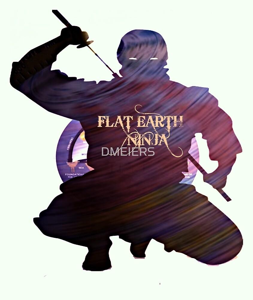FLAT EARTH NINJA by DMEIERS