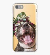 Flower Power, Luther laughing iPhone Case/Skin