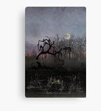 Willow Moon Canvas Print