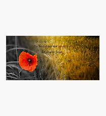 The fields of gold - rememberance Photographic Print