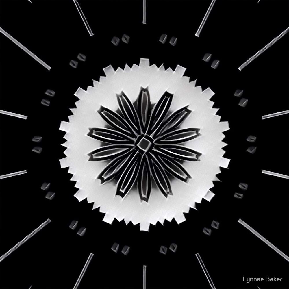 Black Velvet by Lynnae Baker
