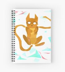 Geometry Cat Spiral Notebook