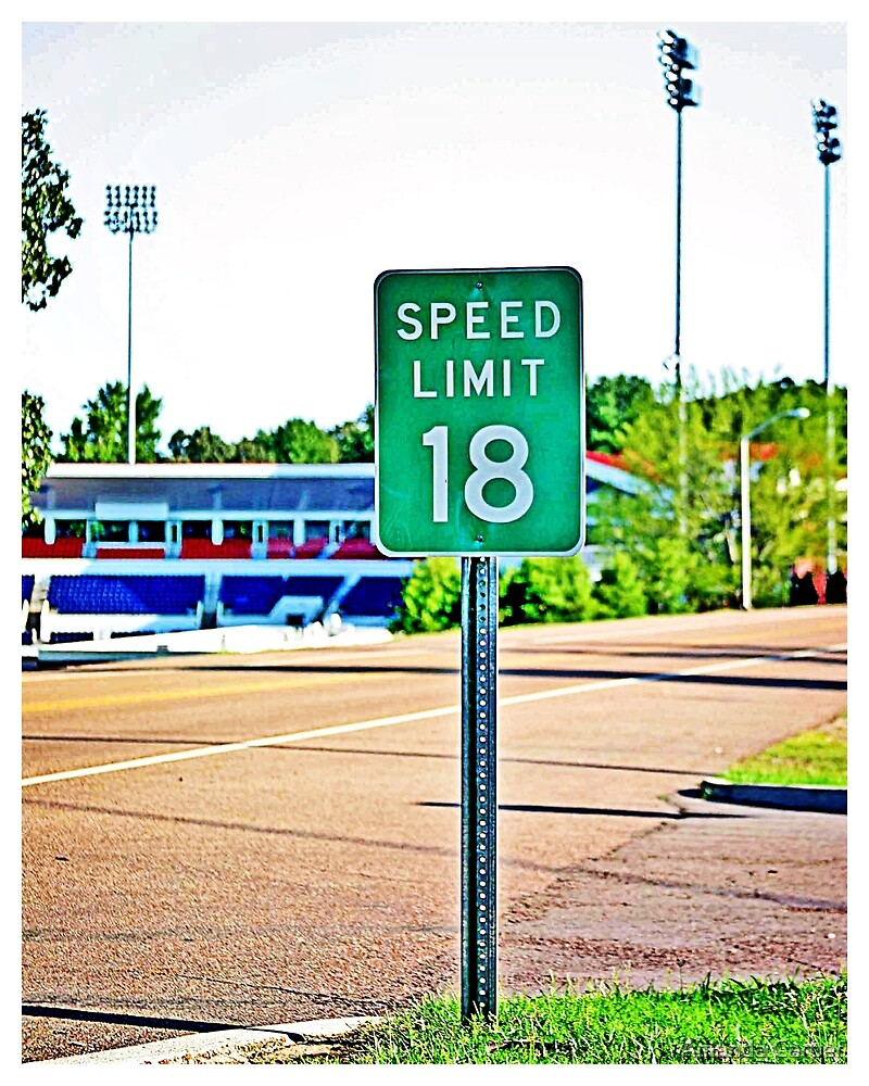 Speed Limit 18 by Amanda Carper
