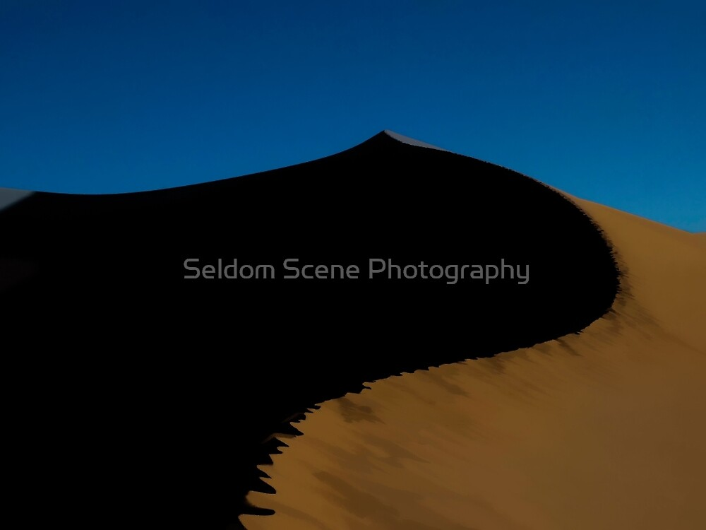 To The Very Top by Seldom Scene Photography