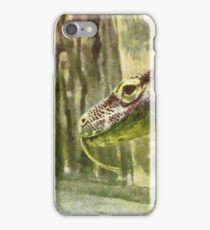 Moving slowly and deliberately iPhone Case/Skin
