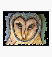 Majestic Owl Oil Pastel Photographic Print