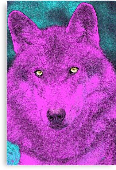 Dyed Wolf by sandywv