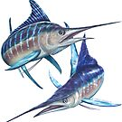 Striped Marlin by David Pearce