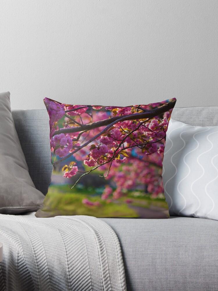 Cherry blossom (sakura) by napavi