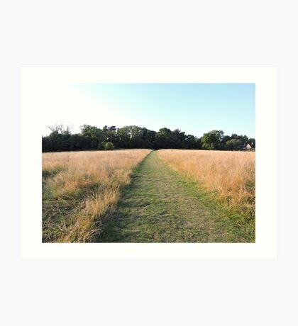 Golden Grasses: Path of Dreams Art Print
